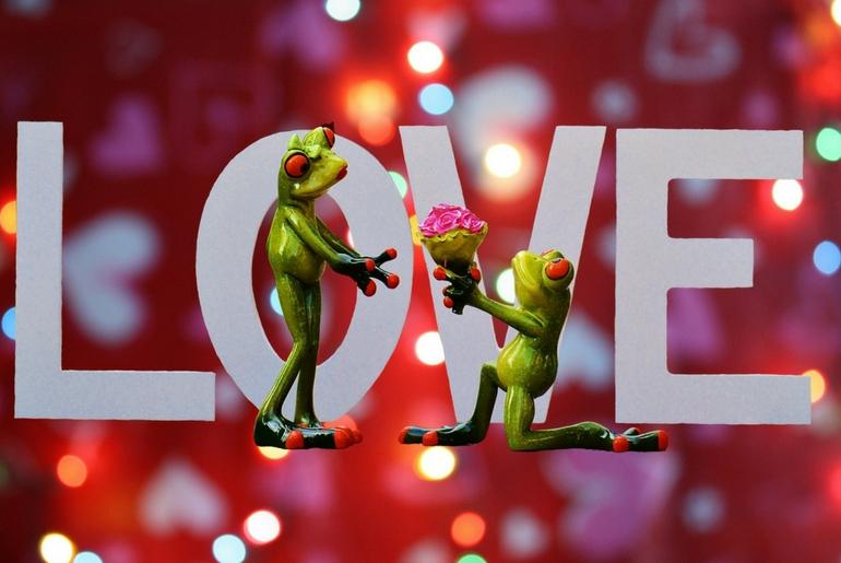 Roșu, roz sau verde – care este culoarea iubirii?